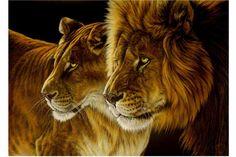 South African WildLife - Artist Dawie Mocke