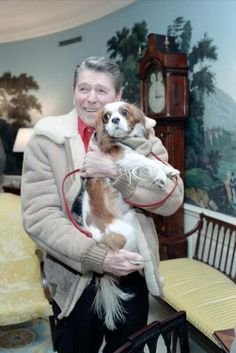 """President Reagan holding """"Rex"""" in the Diplomatic Reception Room. Rex was a Cavalier King Charles Spaniel who lived to the age of 13 with the Reagan family. Cavalier King Charles Dog, King Charles Spaniel, Cavalier King Spaniel, Rei Charles, Game Mode, Spaniel Puppies, Mans Best Friend, Chihuahua, Yorkie"""