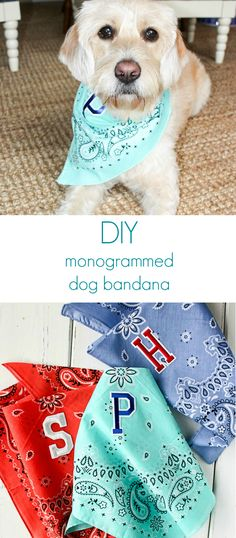 Make your dog a colorful monogrammed bandana.