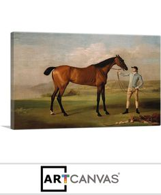 Ready-to-hang Molly Longlegs Canvas Art Print for Sale canvas art print for sale. Free hanging accessories and insurance. Art Prints For Sale, Canvas Art Prints, Horses, Painting, Animals, Animales, Animaux, Painting Art, Horse
