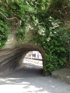Kita-Kamakura station, Kamakura, Japan 北鎌倉駅沿いの道の小トンネル