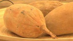 The Baobab – on British TV thanks to the Eden Project Eden Project, Video Link, Films, British, Tv, Food, Movies, Television Set, Essen