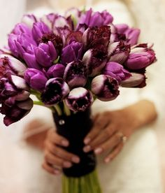 buque de tulipas, bouquet de casamento, bouquet de tulipas
