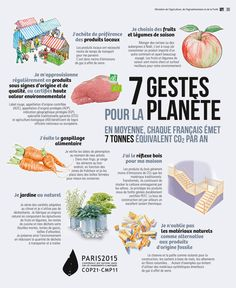 Science infographic and charts Les infographies Infographic Description Les infographies - Infographic Source - Ap French, French Class, French Lessons, Learn French, Study French, French Stuff, French Teacher, Teaching French, High School French