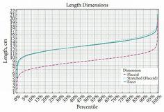 Średnia długość penisa