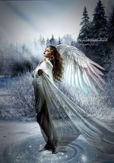 Angels are bright lights in the midst of our lives ^i^ ♡ ^i^