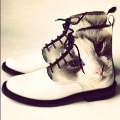 Chaussures Du Tableau Images Drôles De Meilleures 181 Et aznZ46a