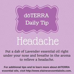 Use doTERRA Lavender to relieve a headache. http://www.elainesessentialoils.com
