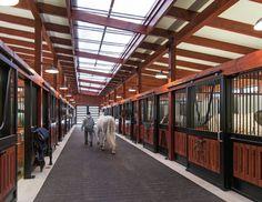 Pegaso Farm - Photo Credit: Cesar Lujan