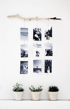 DIY photos hanging on driftwood