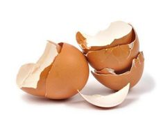 Benefits of Eggshells for Strawberry Plants in the Backyard Garden Strawberry Garden, Strawberry Plants, Weed Plants, Planting Vegetables, Egg Shells, Large Flowers, Decorative Bowls, Benefit, Snack Recipes