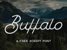 Buffalo is a loopy & quirky monoline script font from Hustle Supply Co. This premium free font is vintage themed and perfect for branding and promotional projects! Free for Personal & Commercial use  MORE GREAT PRODUCTS FROM HUSTLE SUPPLY CO MASSIVE FONT BUNDLE ARTISAN COLLECTION THE GIANT