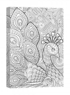 1000 images about Adult Colouring
