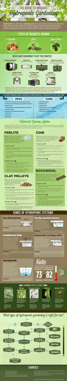 Guide to Organic Hydroponic Gardening [Infographic] - Living Green Magazine Aquaponics System, Hydroponic Farming, Hydroponic Growing, Growing Plants, Hydroponic Solution, Hydroponic Plants, Aquaponics Diy, Organic Gardening, Gardening Tips