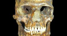OLD HUMANS REVEAL SECRETS  DNA from a 37,000-year-old skeleton found at the Kostenki archaeological site in Russia supports recent findings and offers new ones about the history of human evolution.