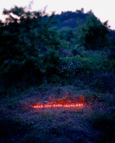 Messages with Glowing Neon Letters is a collection of photos which is carried for you the work of artist Lee Jung. The South Korea-based photographer Lee Jung sends all kinds of tangible messages with these neon text-based installations. Neon Words, Love Words, Neon Quotes, Neon Aesthetic, Lee Jung, Luz Natural, The Real World, Land Art, Neon Lighting
