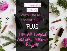 13 Essential Oils to Eliminate Stinky Odors - Plus 3 Odor Blends You'll Love - MintyMixx Essential Oils Tooth Ache, Young Essential Oils, Best Essential Oil Diffuser, Essential Oils Guide, Essential Oil Uses, Massage Oil, Softball Tshirts, Bedroom Fun, Household Products