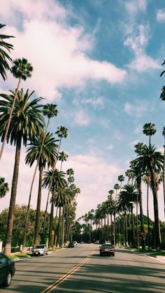 68 Ideas Travel Background Iphone Photography Palm Trees For 2019 Tumblr Wallpaper, Tree Wallpaper, Nature Wallpaper, Wallpaper Backgrounds, Desktop Wallpapers, Aesthetic Backgrounds, Aesthetic Wallpapers, Nature Photography, Travel Photography