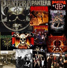 Pantera 2 times. It's freaking Pantera dude. Seen them frontrow at Ozzfest and got a few of Dimebags guitar pics. Phil was on mushrooms and bashed himself in the head with the microphone bleeding like crazy.