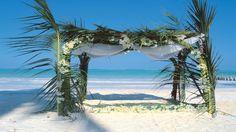 Photos - Experience the magic of Zanzibar at Breezes Beach Club and Spa which lies on Bwejuu beach voted as one of the 30 top island beaches in the world. Wedding Canopy, Wedding Venues Beach, Destination Wedding, South Africa Holidays, Zanzibar Hotels, East Coast Beaches, Stone Town, Tanzania Safari, Honeymoon Packages