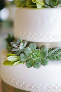 I heart smooch this cake - so chic, modern, elegant and natural - all at the same time!