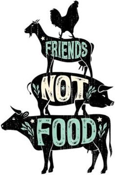 Friends Not Food Vegan vegetarian T-shirt Large Large White T-shirt Soft Friends Not Food Vegan vegetarian T-shirt Large Large White T-shirt Soft Sav… – Best Friends Forever Vegetarian Quotes, Vegan Quotes, Going Vegetarian, Going Vegan, Food Quotes, Protein Dinner, Moist Pumpkin Bread, Vegan Memes, Why Vegan