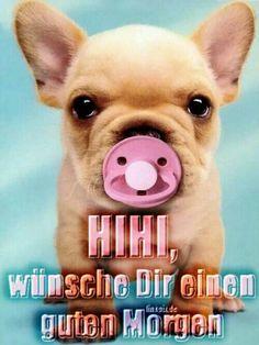 Wünsch euch eine gute Nacht - http://guten-abend-bilder.de/wuensch-euch-eine-gute-nacht-215/