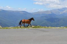 a moment in time, great places, amazing motorbike roads, breathtaking views www.motorcycle-tours.travel