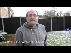 Video: Three-legged rescue boxer dog Milly wins Ipswich photographer's competition - News - Ipswich Star #dogtogUK #milly2015