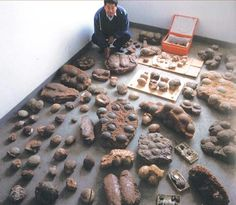 A collection of confiscated dinosaur eggs photographed by Chinese custom officials.  Dinosaur eggs came in all shapes and sizes.