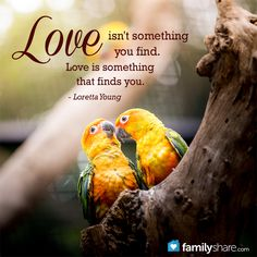 Love Isnu0027t Something You Find. Love Is Something That Finds You.
