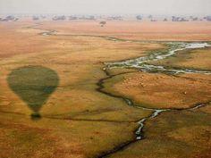 Hot air balloon flight over Kafue's Busanga Plains Balloon Flights, Close Proximity, Hot Air Balloon, Wilderness, Safari, Balloons, Country Roads, Camping
