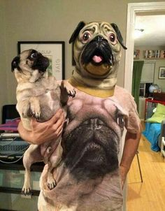 """""""Pugs on Pugs on Pugs"""". The look on the pug's face! Roflmao this is awesome. Funny Animal Jokes, Funny Dog Memes, Funny Animal Pictures, Cute Funny Animals, Animal Memes, Cute Baby Animals, Dog Pictures, Funny Dogs, Funny Photos"""