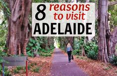 8 Reasons to Visit Adelaide in Australia