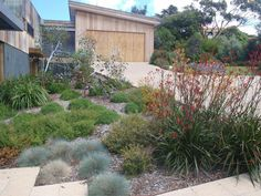 Front garden idea, From c. - Front garden idea, From creating a garden that you can use to be more attentive to growing your own food To help you feel more calm about w Modern Landscape Design, Garden Landscape Design, Modern Landscaping, Front Yard Landscaping, Modern Backyard, Landscaping Plants, Landscaping Ideas, Australian Garden Design, Australian Native Garden