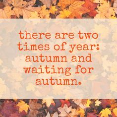 Ha. I try to enjoy each season as it comes, but yes, autumn is definitely my favorite time of year.