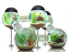 Top 10 Fish Tank Decorations Ideas
