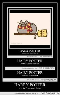 Harry Potter for your cat . . . . The promo for the website is actually funnier than the Hairy Potter joke.