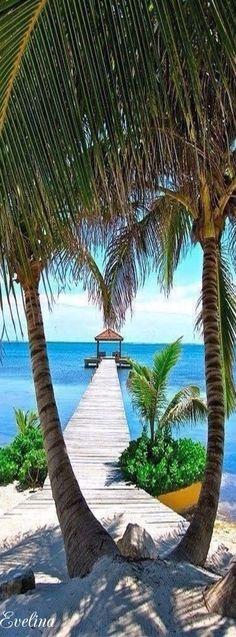 Breathtaking views ~ Ambergris Caye, Belize