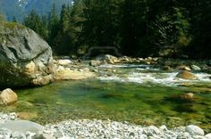 Deep pool on the edge of the Seymour River in North Vancouver. Occasional summer time hangout during teen years.