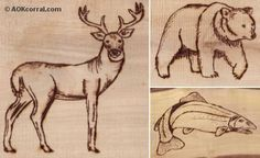 Wildlife Patterns; Wood Burning                                                                                                                                                                                 More
