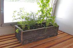 Little Window Herb Garden