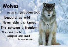 Beautiful wolves and wolf quotes . Wolf Pack Quotes, Wolf Qoutes, Lone Wolf Quotes, Wolf Poem, Types Of Wolves, Wolf Stuff, Wolf Spirit Animal, Native American Quotes, Wolf Pictures