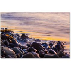 Trademark Fine Art Wet Rock Reflections Canvas Art by Chris Moyer, Size: 16 x 24, Multicolor