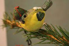 ptaszek, bird