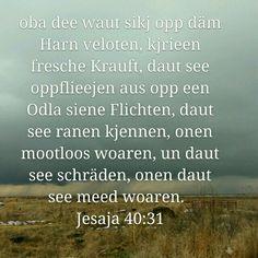 Jesaja 40:31