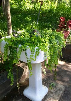 Pedestal Sink Turned Into Decorative Planters - Unique Balcony & Garden Decoration and Easy DIY Ideas Garden Sink, Balcony Garden, Decorative Planters, Vintage Planters, Vintage Sink, Outdoor Sinks, Pedestal Sink, Garden Projects, Garden Ideas