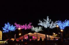 Plaça Catalunaya christmas #christmasinbarcelona #hotelmurmuri