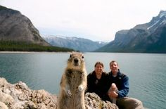 I love this photo!! So funny! This couple put the self timer on for a photo and this little guy popped into the picture...lol :))