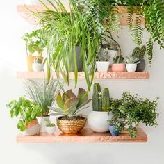 Make your own Anthro inspired copper shelves!